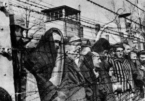 Героев Собибора вспомнят в Музее Победы в годовщину восстания