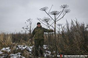 Кто защитит русских фермеров в Подмосковье?