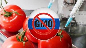 Статья учёных ИППИ РАН не является подтверждением безопасности ГМО