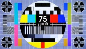 "Телеканал ""Царьград"" объявил 100-дневный мораторий на критику правительства"